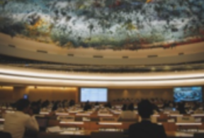 Local Governments and Human Rights: Invitation to a dialogue with the United Nations and contribution of the Committee to the UCLG World Congress