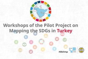 Workshops Of The Pilot Project On Mapping The Sustainable Development Goals (Sdgs) In Turkey