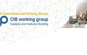 CIB Annual Meeting 2021