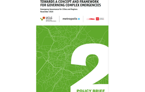 Policiy Brief #02 Towards a Concept and Framework for Governing Complex Emergency