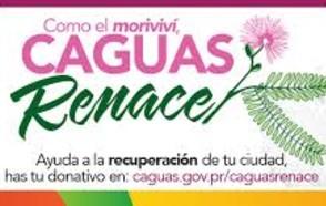 UCLG se hace eco del llamado a la solidaridad de FLACMA con los municipios de Puerto Rico