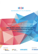 Policy Recommendations Urban Challenges and Opportunities for the Mediterranean Region