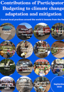 Contributions of Participatory Budgeting to Climate Change Adaptation and Mitigation: Current Local Practices Around the World & Lessons from the Field.