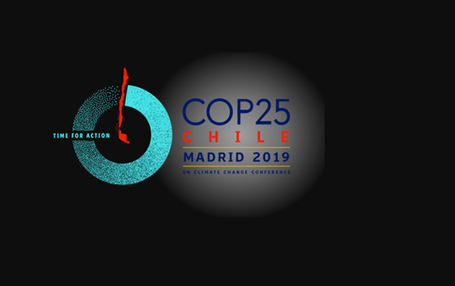 The Conference of the Parties (COP), 2019