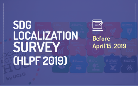 An online survey to report on SDG localization at local and regional levels