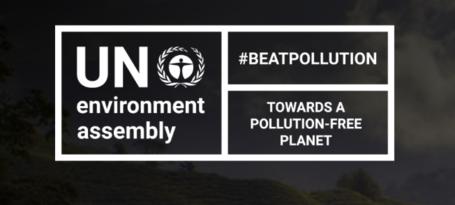 UN Environment Assembly (UNEA)